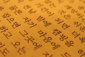 language-lead